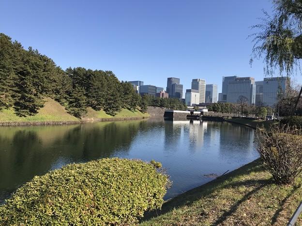 Photos: 皇居外苑