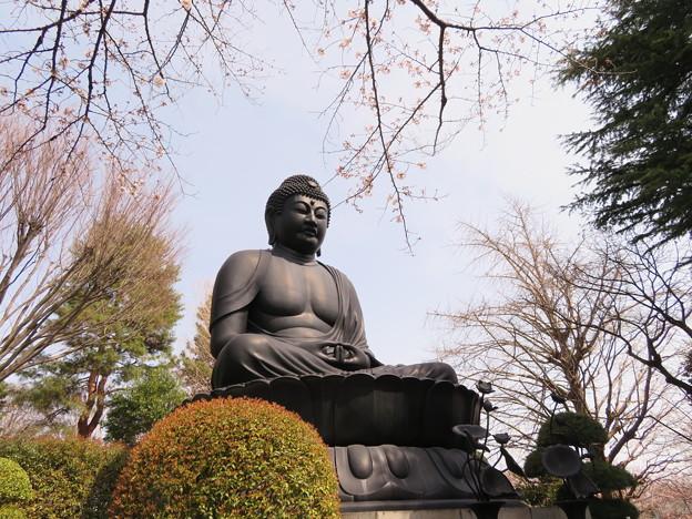 赤塚山 乗蓮寺