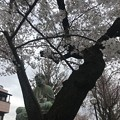 諏訪山 吉祥寺