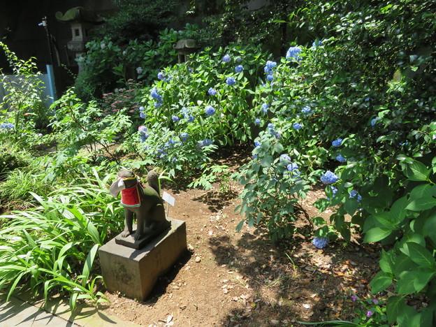 Photos: 王子稲荷神社