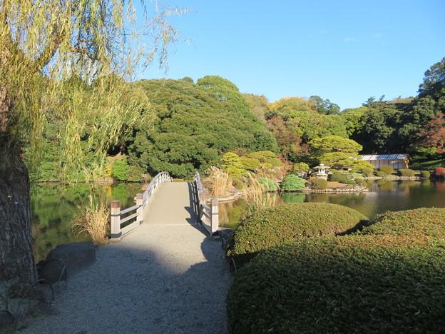 新宿御苑43
