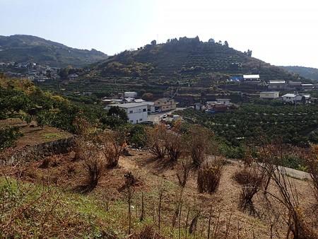 28 12 熊本 旧河内町の風景 2