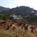 写真: 28 12 熊本 旧河内町の風景 2