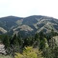 写真: 29 GW 山形 酒田 風景 0