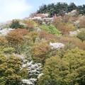 写真: 29 GW 山形 酒田 風景 4