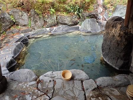30 11 宮城 轟温泉 とどろき荘 5