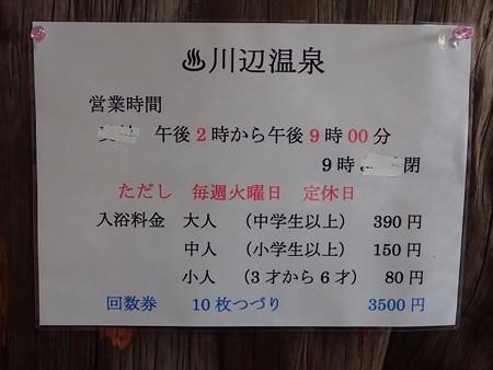 31 3 鹿児島 川辺温泉 11