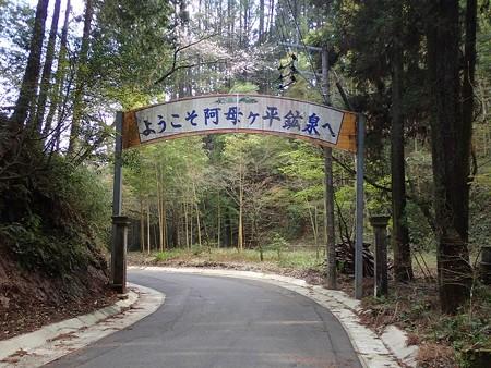 31 3 宮崎 、阿母ヶ平鉱泉湯ゆの里 1