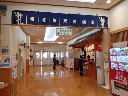 31 3 宮崎 青井岳温泉 2