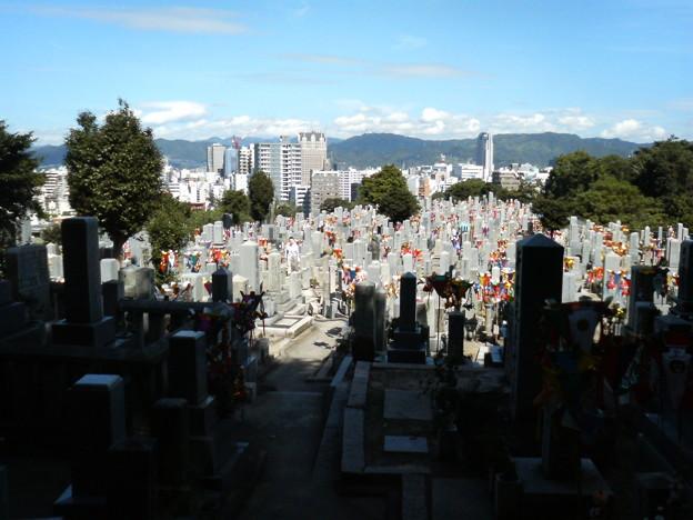 Photos: 比治山お墓参り