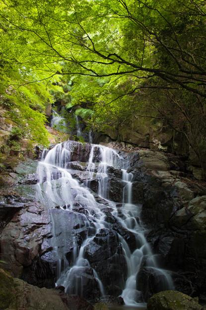 千寿院の滝の♪
