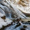 写真: くじゅう名水の滝♪
