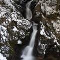 写真: 雪の五塔の滝♪