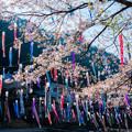 Photos: 杖立温泉♪