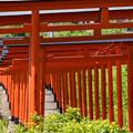 Photos: 浮羽稲荷神社♪