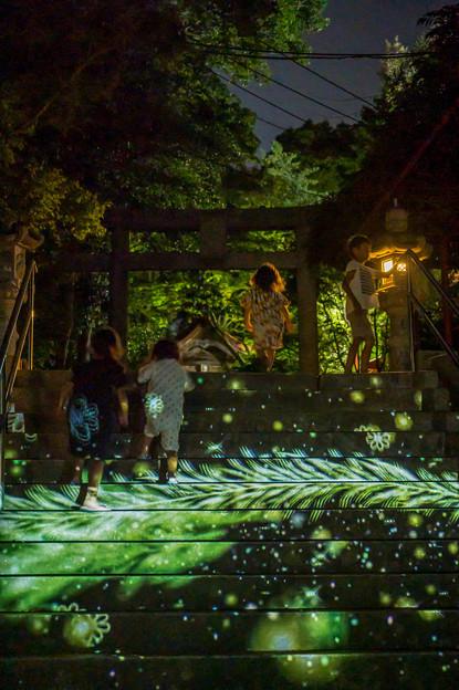 香椎宮 観月祭♪