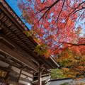 Photos: 篠栗町 呑山観音寺の紅葉♪