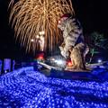 Photos: 巨大かがしゴリラと花火♪