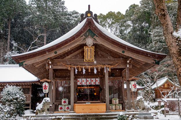 雪景色の竈門神社♪