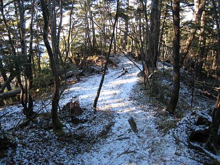 雲取山荘への下り