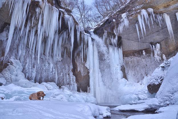 氷瀑と息子