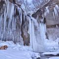 写真: 氷瀑と息子