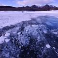写真: ice bubble