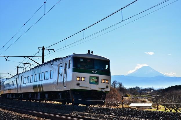 Photos: 新年にラストラン