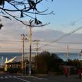 Photos: 海辺の朝