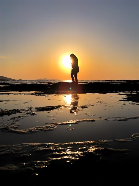 Photos: ある日の海岸散歩