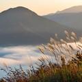 Photos: 雲海シーズンイン