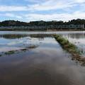 千葉県豪雨後の亀崎踏切