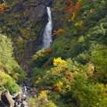 写真: 「幻の尾丸滝」