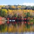 Photos: 「白駒池、秋の装い」