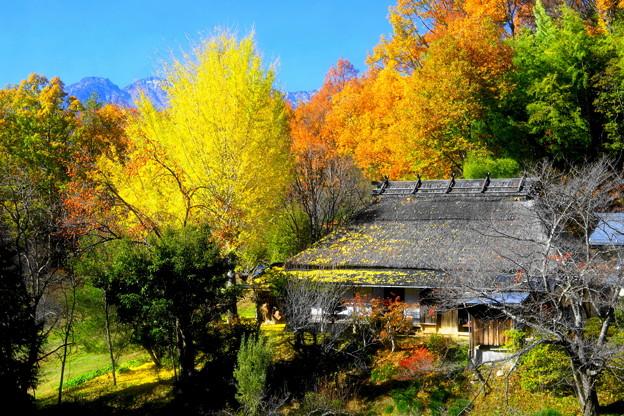 Photos: 「紅葉と茅葺きの家」
