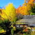 「紅葉と茅葺きの家」