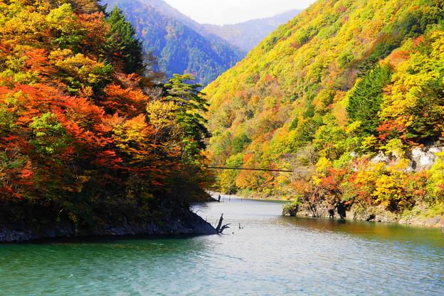 「梓川渓谷の紅葉」