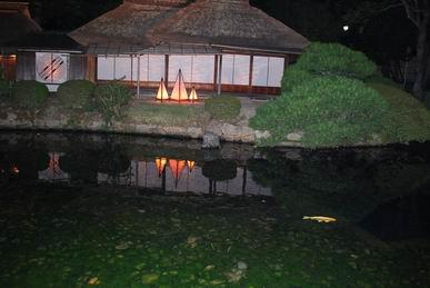 公園の夜の風景