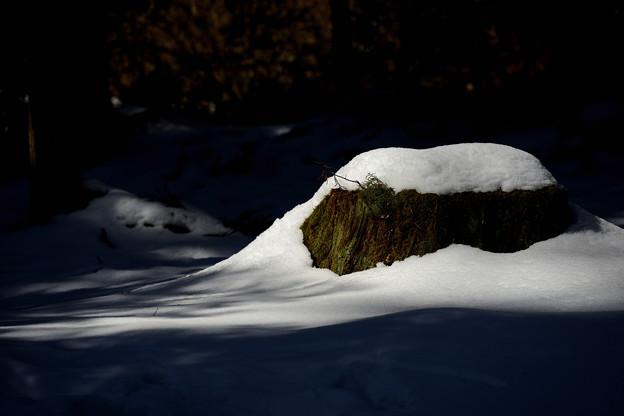 '19_美山かやぶきの里雪灯廊_044