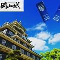 撮影した岡山城を加工