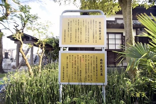 15 (新潟県)長岡藩野戦病院 (2)