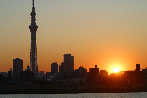 Photos: スカイツリーと夕陽