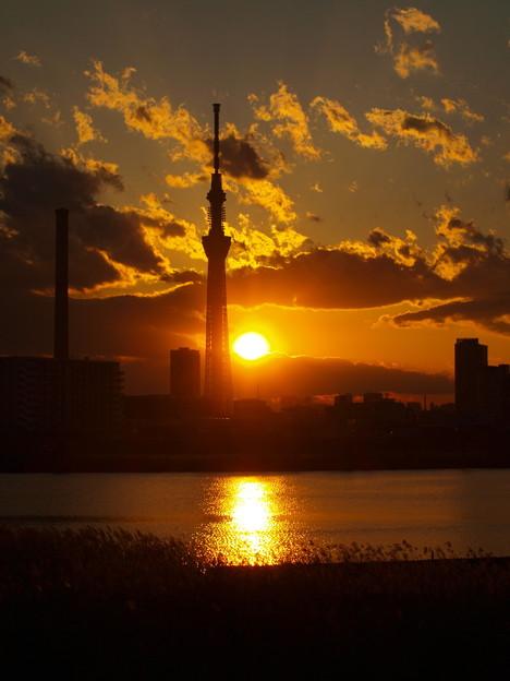 Photos: 夕日と荒川とスカイツリー