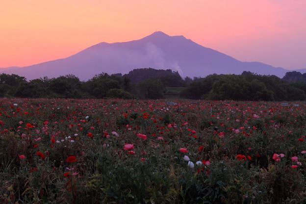 Photos: 筑波山