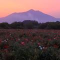 写真: 筑波山