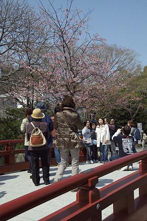 鎌倉 05