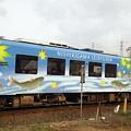 写真: 清流の列車