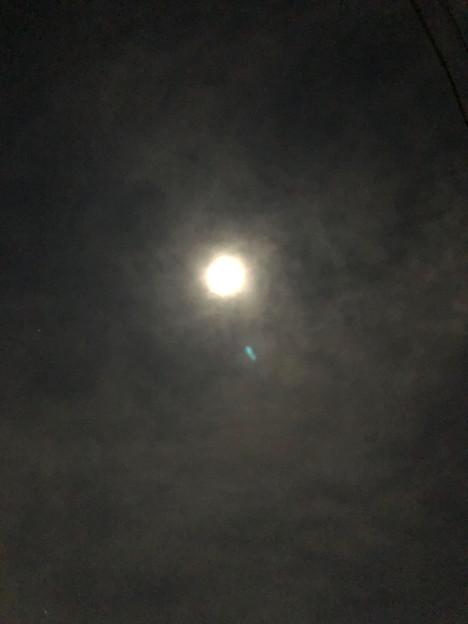 月がとっても青いから?