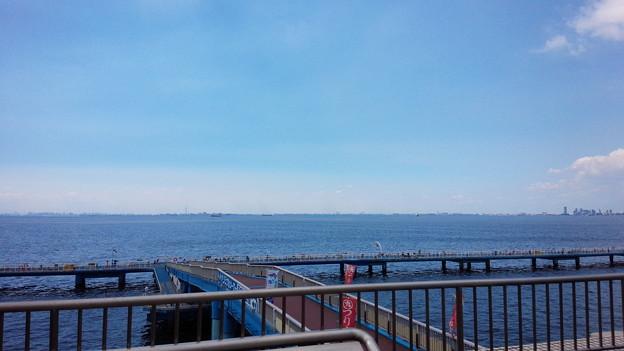 市原市海釣り公園2