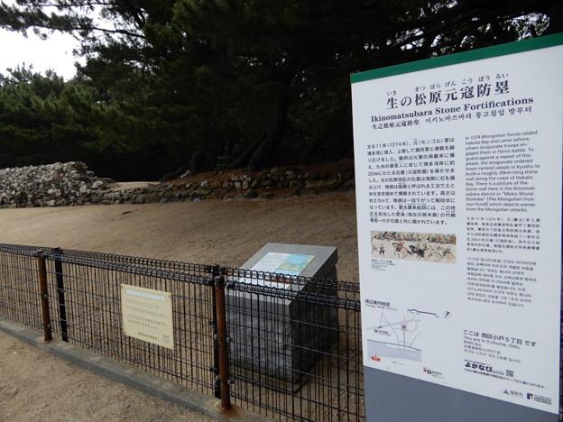 2018.6.10 生の松原元寇防塁